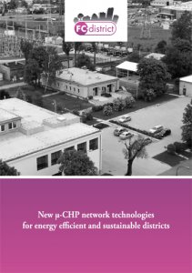 New μ-CHP network technologies for energy efficient and sustainable districts